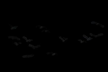 سكرابز متنوع للتصميم P_113298tpw9